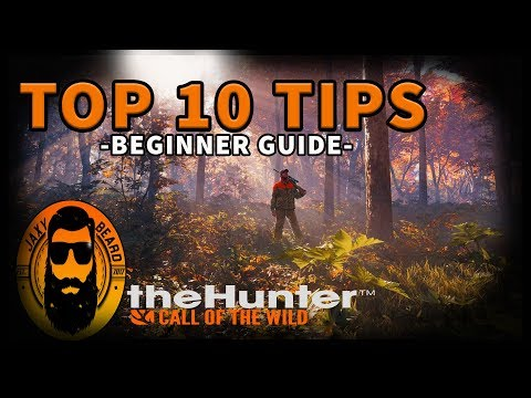 TOP 10 BEST TIPS & TRICKS FOR BEGINNERS in THE HUNTER Call of the Wild!
