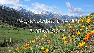 Национальные парки в опасности
