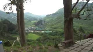 preview picture of video 'Cameron Highlands BOH tea Centre'