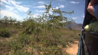 preview picture of video 'Visit to a Haitian Village'