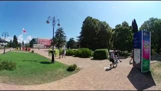 платановая аллея в Сочи, ВИДЕО 360