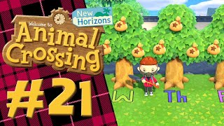 Do 99k Money Trees REALLY Have A Pattern? | Animal Crossing New Horizons! | Part 21