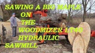 Massive 3000+ lbs crooked honey locust versus Norwood
