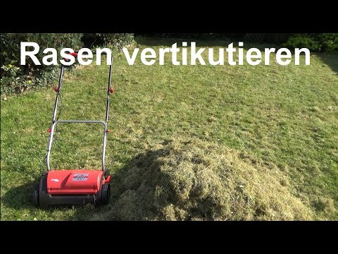 Rasen vertikutieren - Wann und wie Rasen vertikutieren belüften ?