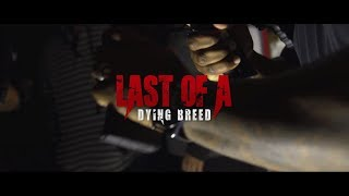 "Dallas Feat. Pooca Leroy - ""Last Of A Dying Breed"""