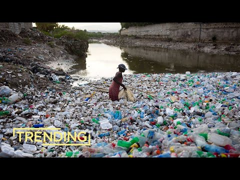 Sodastream Cleans Up Ocean Plastic in Honduras