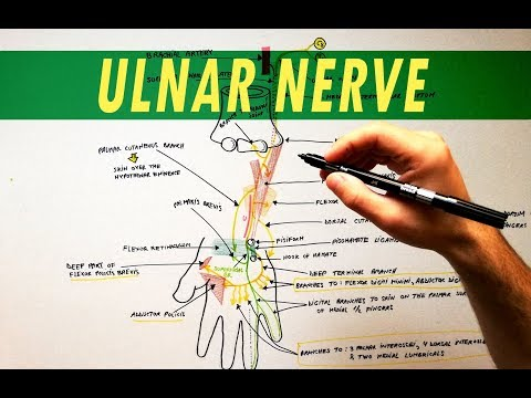 Hatékony gyógyszer a nyaki osteochondrozisra