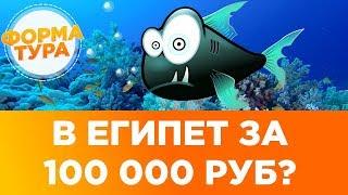 Сколько стоит тур в Египет? Россия - Египет. Когда распродажа туров