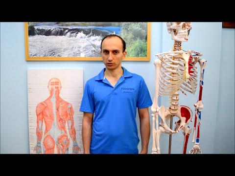 Articolazioni dugootroschatye di anatomia della colonna vertebrale