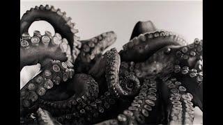 Hyperrealistic art – Silvia Pagano Art – HAI PAURA DEL BUIO?