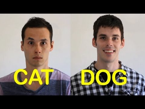 My Best Friends : Chiens & Chats PC