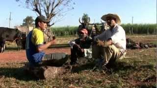preview picture of video 'Azúcar Orgánica Paraguay - Cooperativa Manduvirá Ltda 2010'