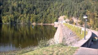 preview picture of video 'Rundwanderweg Stausee Thurnberg/Krumau - Waldviertel'