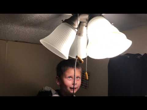Quick Subtle Ceiling Fan Review