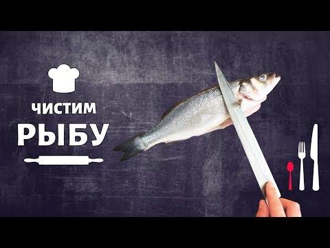 Чистка рыбы. Как правильно чистить рыбу? Как разделать рыбу на филе? Как выбрать рыбу?