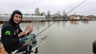 Три пескаря рыбалка форум лыткино 2020г