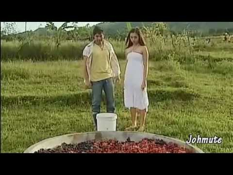 Daniel & Katerina (COCOJUL) ll Dadalhin