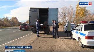 В Марийской республике выявляют факты незаконной транспортировки животных - Вести Марий Эл