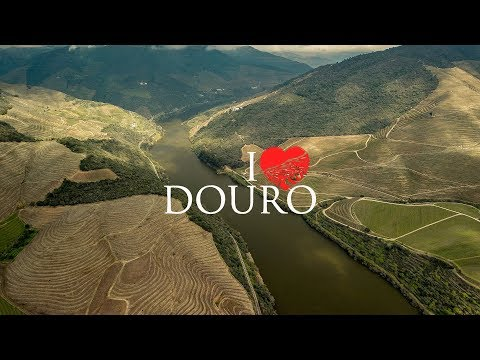 Gourmet Wine Travel Full Video