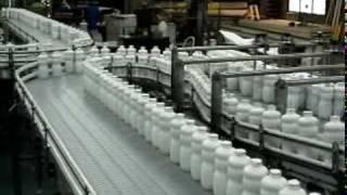 Easy Clean Dairy Conveyor