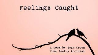Feelings Caught
