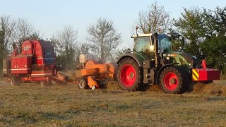 Baling Hay In Small Bales With Fendt 720 Vario And Baler & Bale Baron - Hay 2020