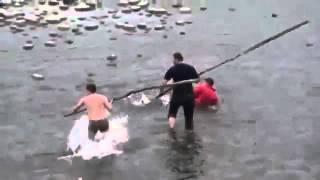 Ловля сазана видео