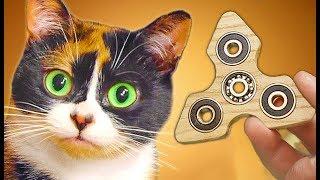 Made a FIDGET SPINNER for CAT