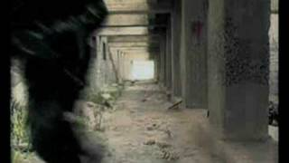 Сталкер : Тень Чернобыля, Звезда по имени солнце