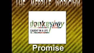 Donkeyboy - Promise Kept