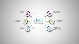 C Suite | A Fusion of Industry, Functional and Analytical Expertise