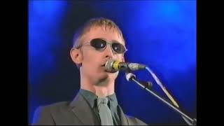 The Divine Comedy - Becoming More Like Alfie - T In The Park 1996