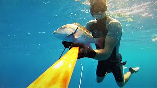 Spearfishing Guadeloupe Désirade Vol 2