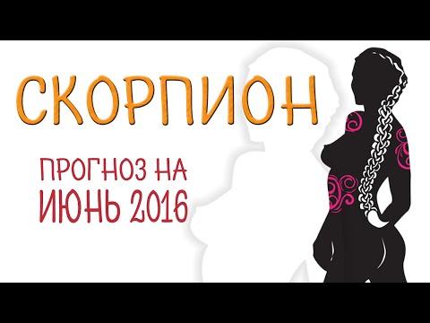 Гороскоп змея козерог женщина на 2016 год