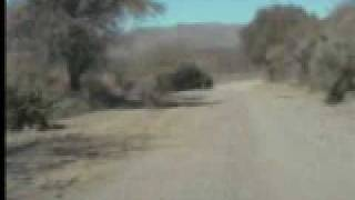 preview picture of video 'chileno luis garcia rally san frco'