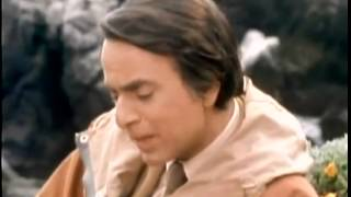 Homenagem a Carl Sagan