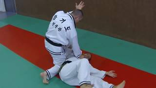 This is Hapkido Jin Jung Kwan