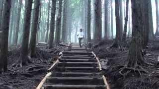 箱根飛龍の滝は神奈川県最大規模の滝
