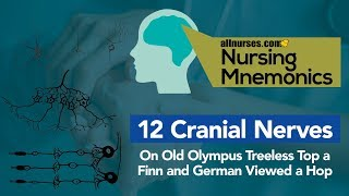 View the video Nursing Mnemonics: 12 Cranial Nerves