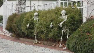 5 Outdoor Halloween Decorations Ideas