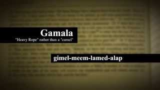 AENT Matthew 19:23-24 Camel Rope Eye of Needle...