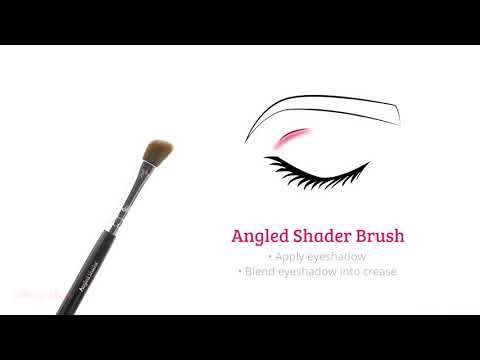 Boozyshop Boozyshop BoozyBrush 8 pc Classic Starter Eye Set