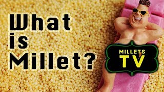 What is Millet and why Millets? | Millets TV