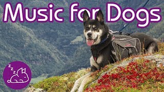How To Relax Your Dog: INSTANT Relaxation Music for Your Pup! (2019)