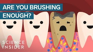 Heres What Happens If You Stopped Brushing Your Teeth