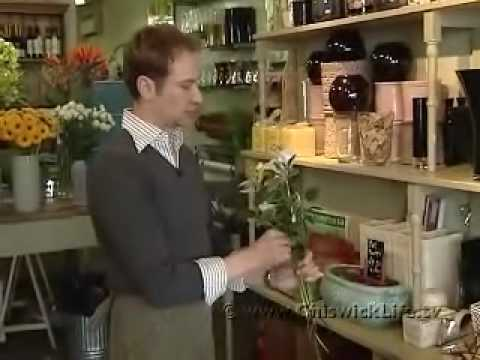 A Day In The Life Of A Chiswick Florist