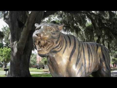 Savannah State University - video