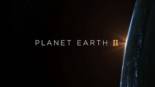 Planet Earth II Hans Zimmer Soundtrack 360° | BBC Earth
