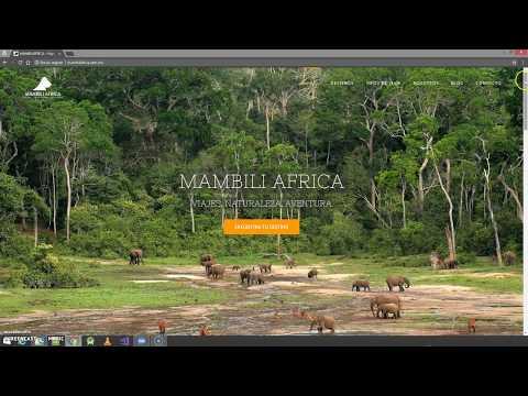 Portafolio de página web MambiliAfrica