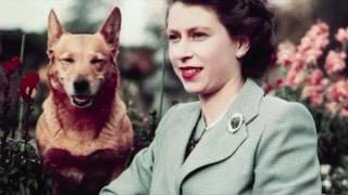Это интересно  Интересные факты о королевской семье Великобритании